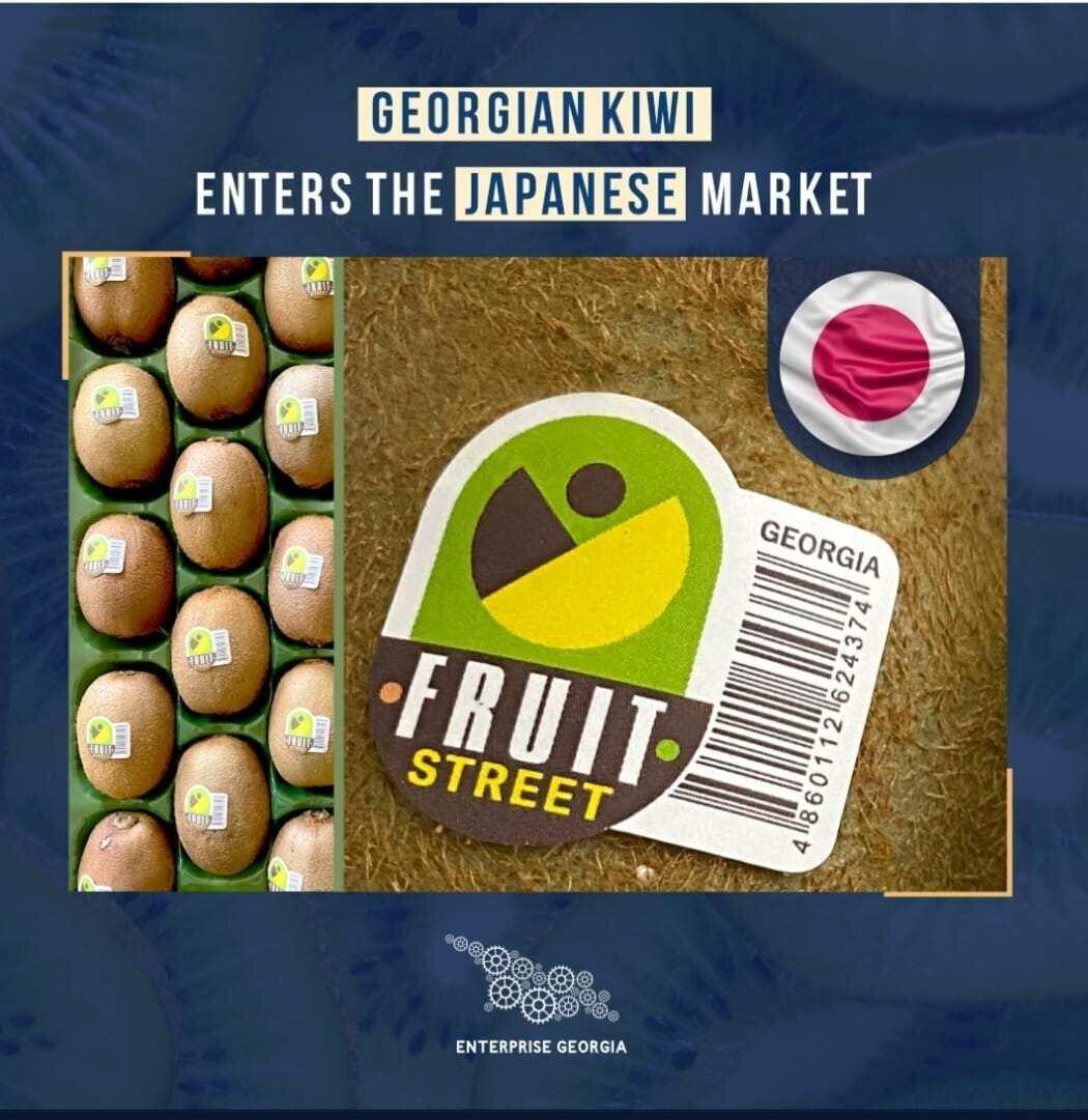Georgian Kiwi enters the Japanese Market