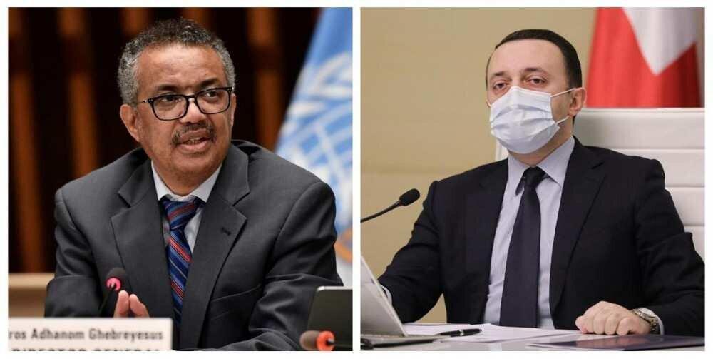 Irakli Gharibashvili spoke with the head of WHO
