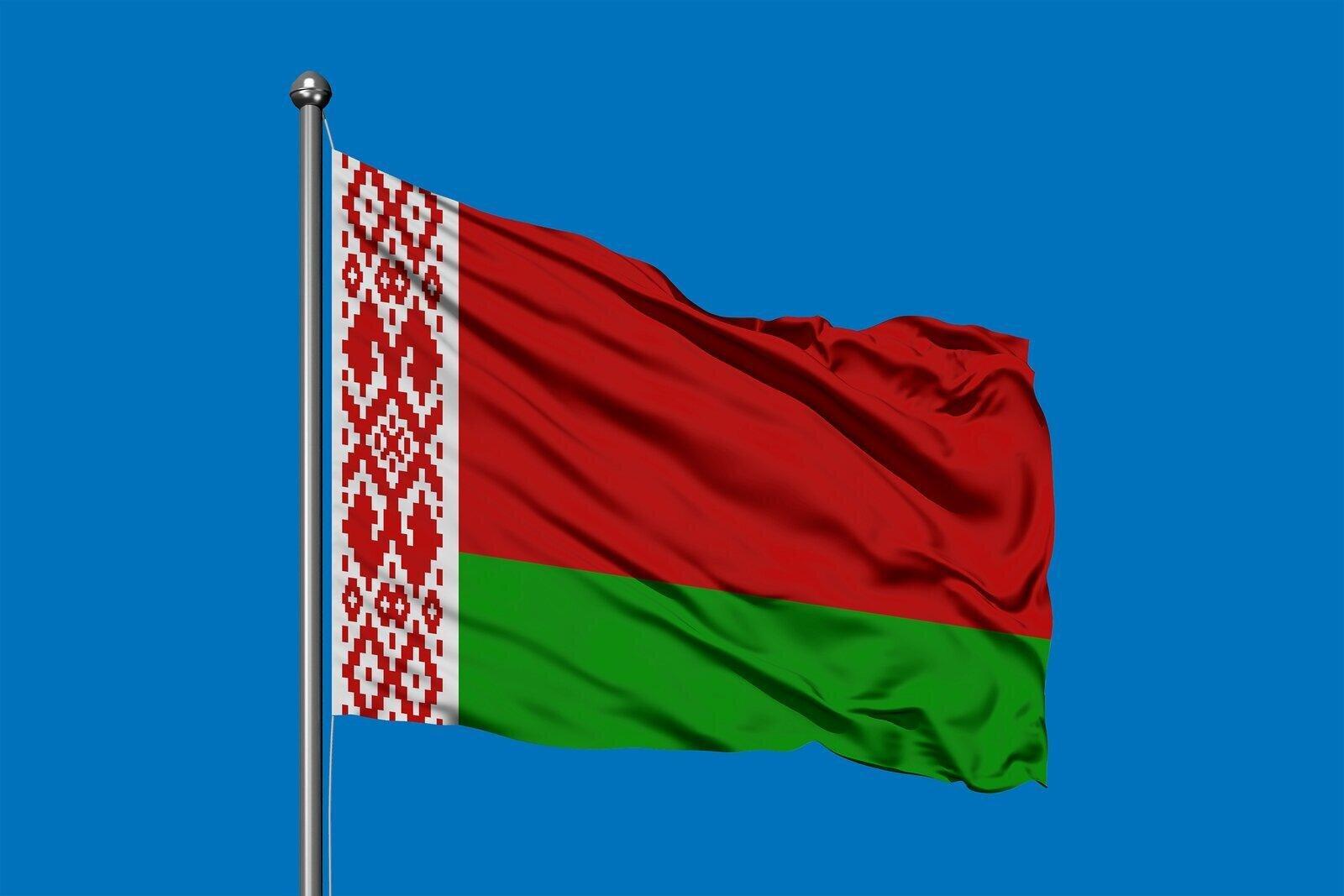 Net FDI in Belarus Up in 2020