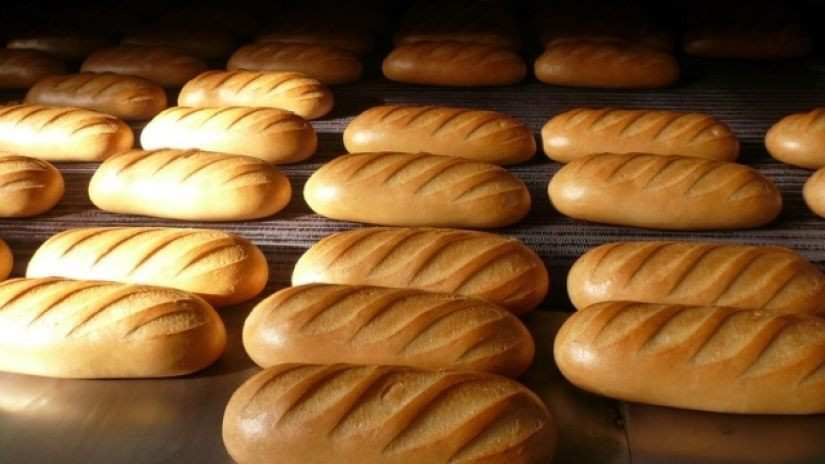"""""""What Kind of Subsidy Will Be Needed Regarding the Price of Bread Will Be Depicted in 2 Weeks"""" – Silagava"""