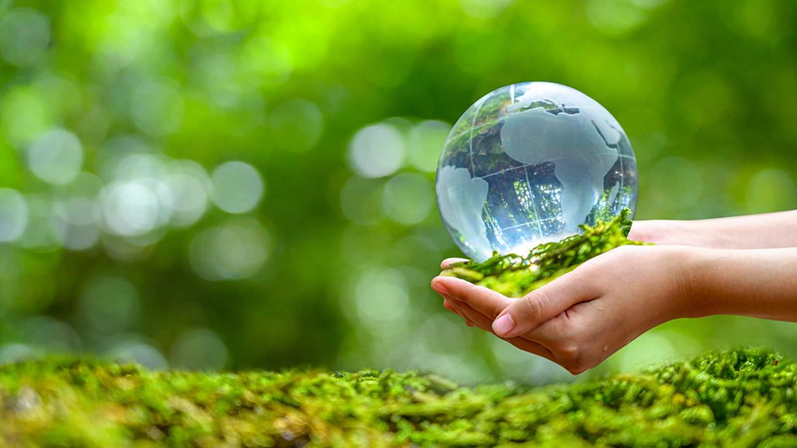 Environmental Protection Expenditure of Turkey was US$ 5.5 Billion