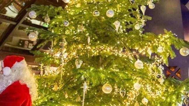 მსოფლიოში ყველაზე ძვირად ღირებული ნაძვის ხე ესპანეთში დადგეს