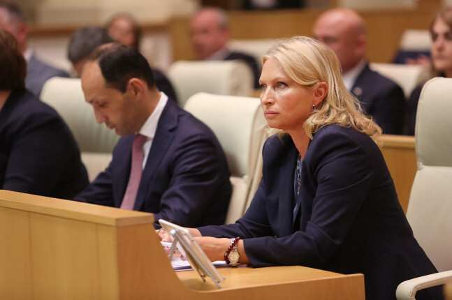 Turnava: searching process of Anaklia's new investor  will be transparent