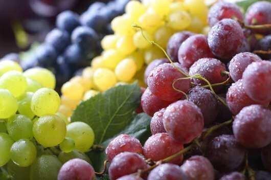 ლარის გაუფასურებამ ხილისა და ყურძნის ექსპორტი წაახალისა - ISET
