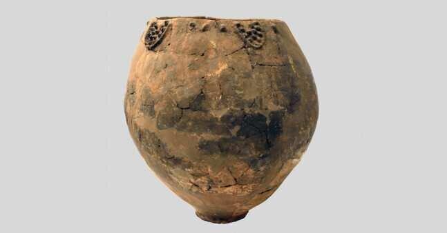 გინესის მსოფლიო რეკორდების წიგნი - მსოფლიოს უძველესი, 8,000 წლის ღვინო საქართველოშია აღმოჩენილი