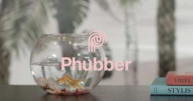 Phubber-ი საერთაშორისო ბაზარზე გადის - 0.5 მლნ ლარის ინვესტიცია და კომპანიის გეგმები