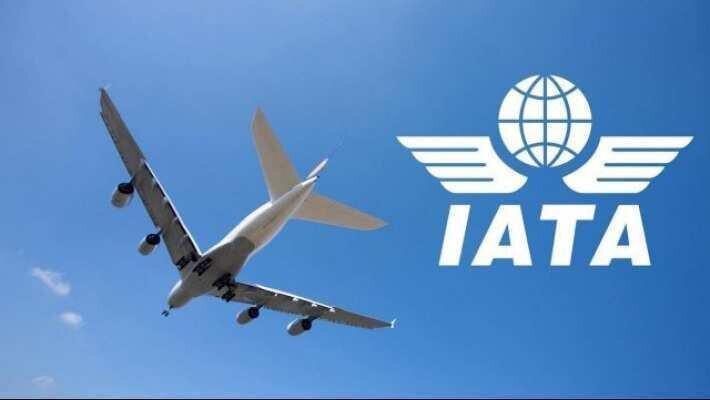 IATA-მ საჰაერო ტრანსპორტით მგზავრობაზე რეკომენდაციები გამოაქვეყნა
