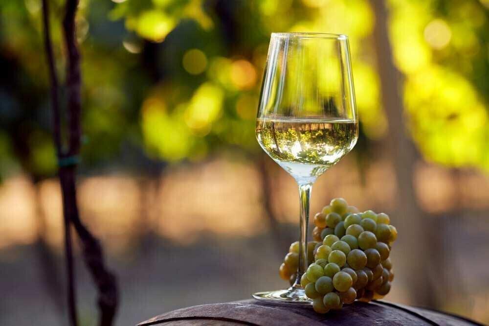 ბევრია თუ ცოტა მთავრობის რთველის სუბსიდია? - ღვინის მწარმოებლების შეფასება