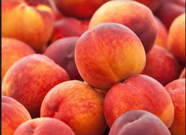 Georgia received $21.3 million from peach export – TOP export markets