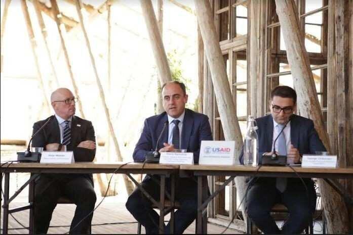 დავით ნარმანია USAID-ის ენერგეტიკული პროგრამის კონფერენციაზე სიტყვით წარდგა