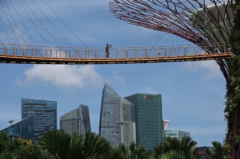 სინგაპური და ინდონეზია ბიზნეს მოგზაურობისთვის საზღვრებს გახსნიან