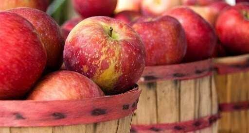 საქართველოდან ექსპორტზე $947 000 ღირებულების ვაშლი გავიდა - სამინისტრო