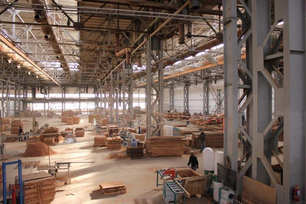 ჰუალინგის თიზ-ში მოქმედი Georgia Wood-ი წარმოებას აფართოებს - ინვესტიცია $6 მილიონია