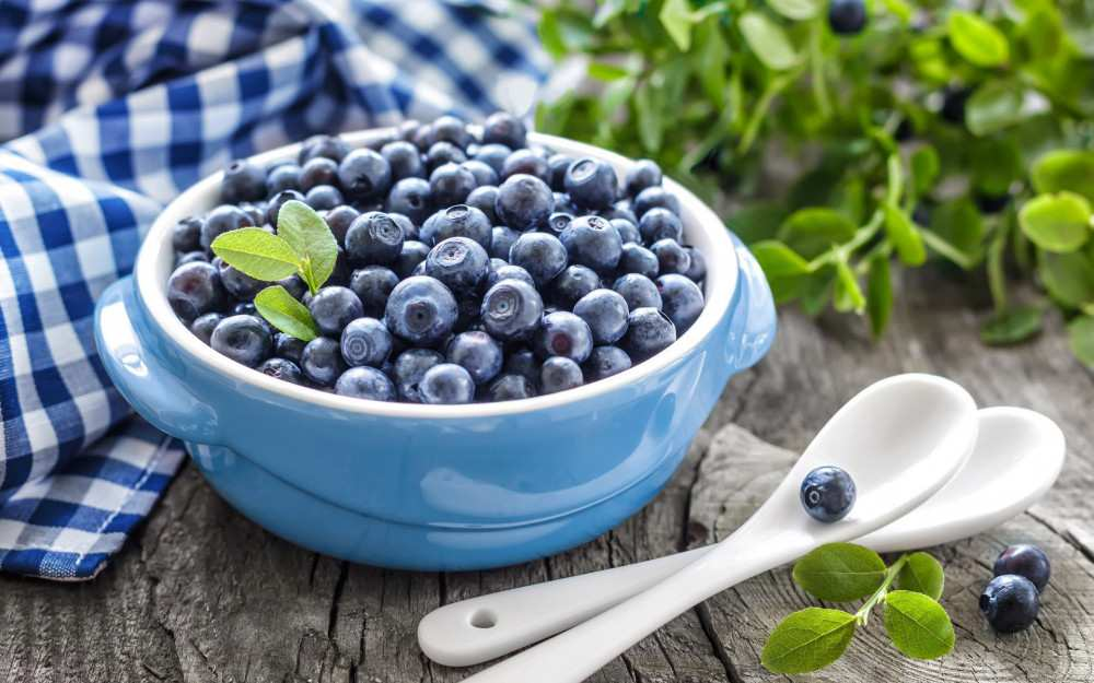 90 tons of blueberries were exported from Laituri - how much does it cost and where is it sold?