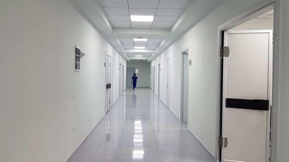"Will ""Georgian-Dutch Hospital"" be transformed into a hybrid clinic?"