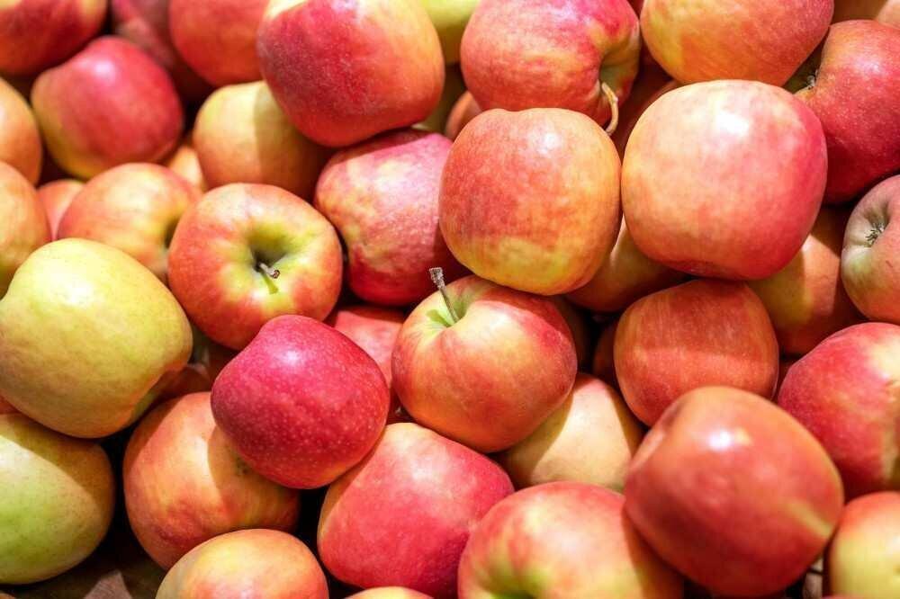 სამინისტრო: საქართველომ ვაშლის ექსპორტიდან $1 მლნ-ზე მეტი შემოსავალი მიიღო
