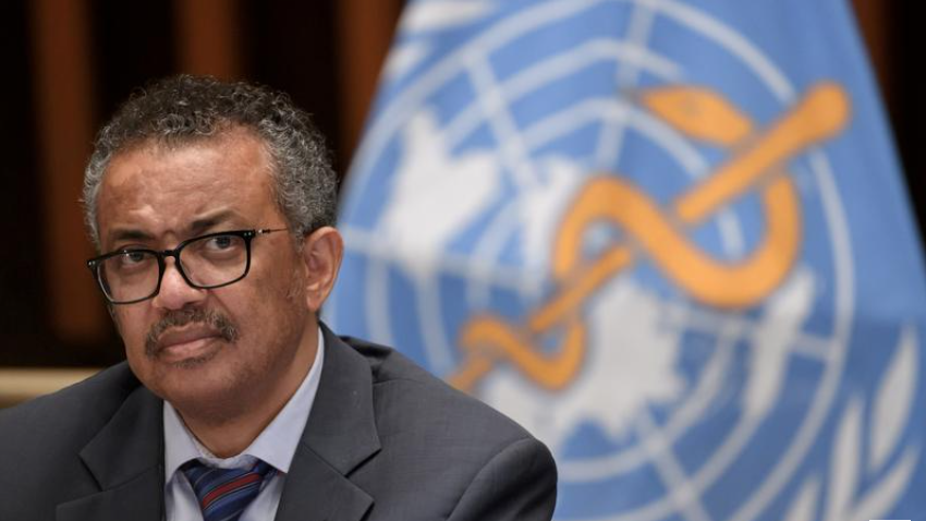 EU urges changes to WHO handling of pandemics