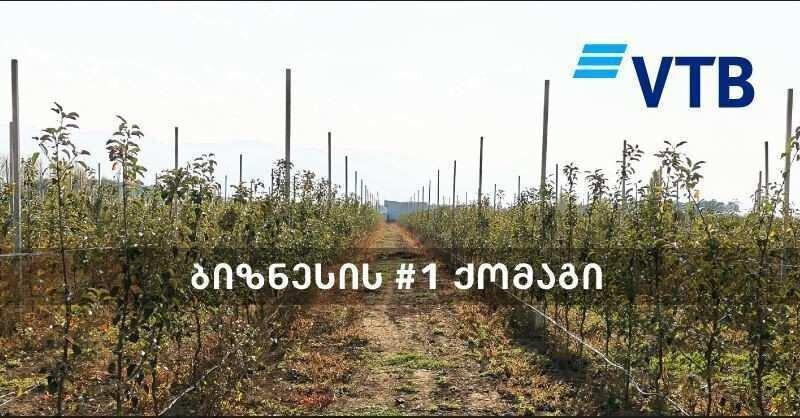 ვითიბი ბანკის მხარდაჭერით, ქარელში ინტენსიური ვაშლის ბაღები  გაშენდა