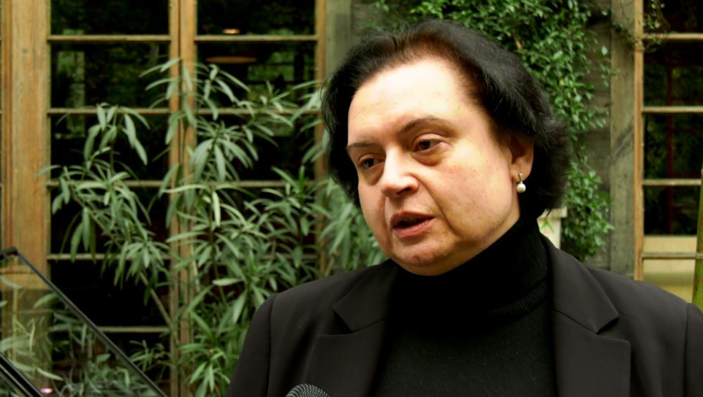 """""""არ ვიცი, მინისტრი რითია უკმაყოფილო"""" - WHO-ს ექსპერტი ტიკარაძის მიერ კლინიკების გაკრიტიკებაზე"""
