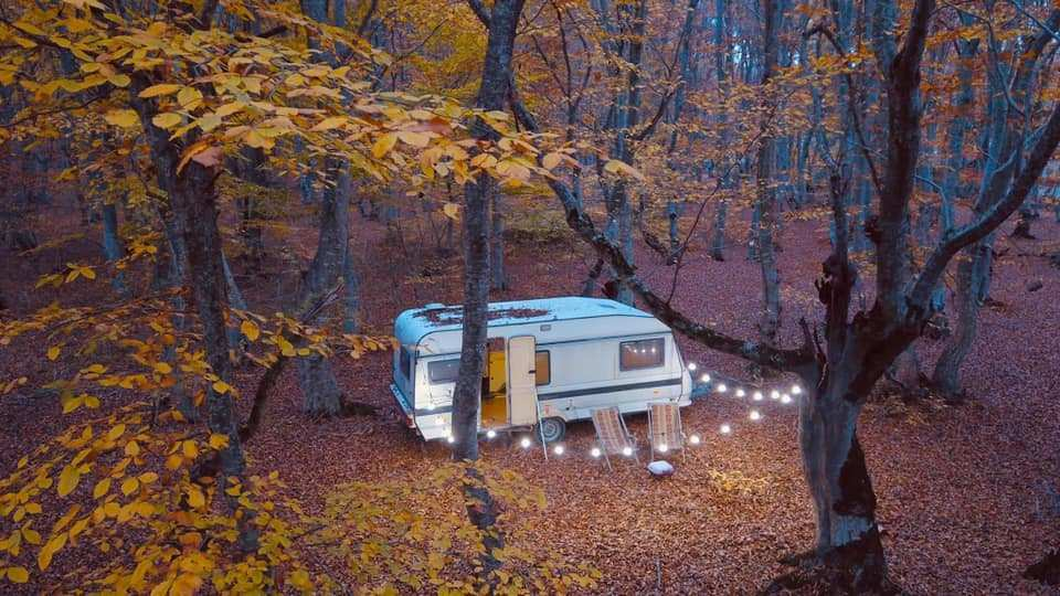 საბადურის ტყეში მოწყობილი ტურისტული ბანაკი დახურეს