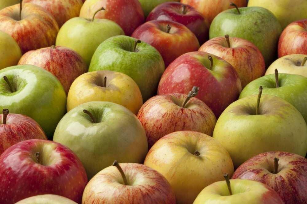 აგვისტო-ნოემბერში ვაშლის ექსპორტი 13-ჯერ გაიზარდა - რომელია ძირითადი საექსპორტო ქვეყნები