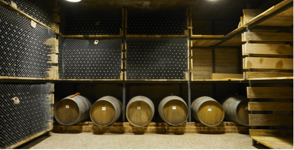 Wine Cellars are in a Catastrophic State - Sommelier Association