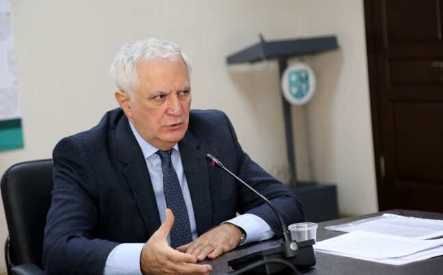 Decision To Ease The Restrictions Requires Deep Analysis – Gamkrelidze