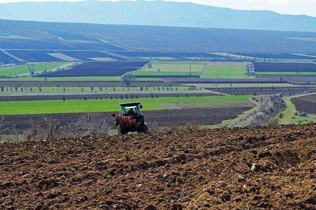 ფერმერები რეგისტრაციას და აგროდიზელზე ფასდაკლების მიღებას დისტანციურად შეძლებენ