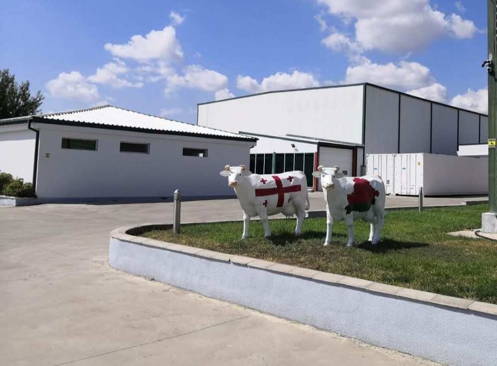 Belarusian Investment of € 2.4 MLN in the Dairy Sector – Tbilisi Milk Factory LLC
