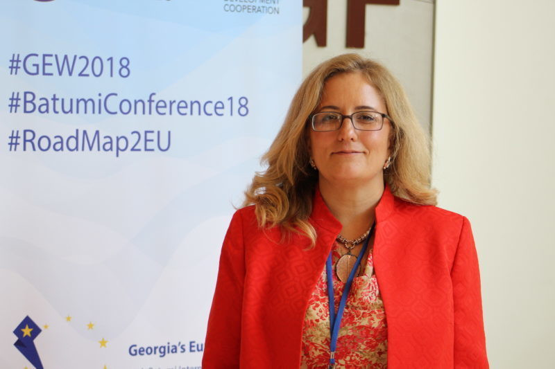 They Should Not Threaten Employees - Turkish Ambassador On Namakhvani HPP