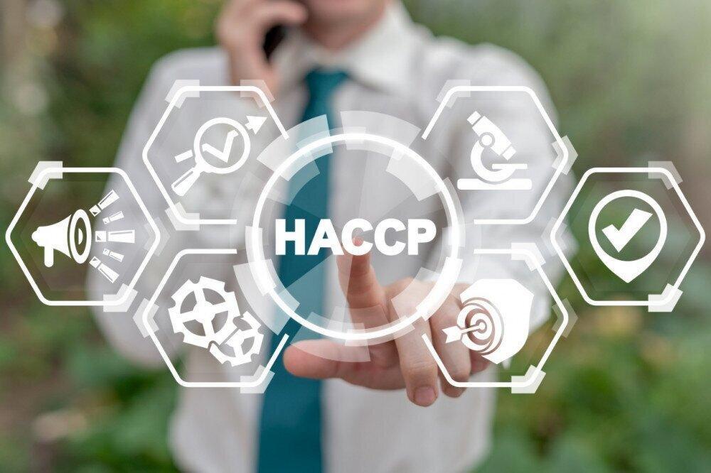 """""""ნამდვილად სააგენტოს თანამშრომლები იყვნენ"""" - ვინ სთავაზობდა კერძო ბაღებს HACCP-ის სტანდარტის დანერგვას"""