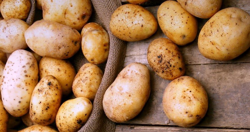 Georgia's Potato Exports Surge Might Become a Permanent Opportunity
