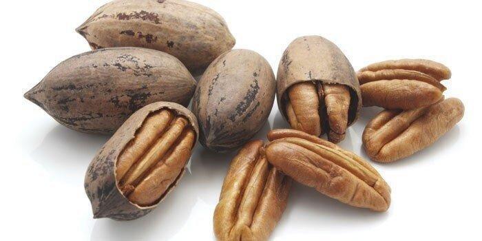All of Georgian Pecan Nuts Harvest Hits Export Markets