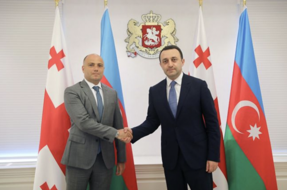 Georgian PM's Meeting With Azerbaijani Minister of Culture