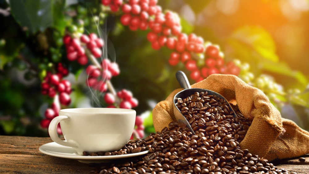 Unusual Cold Weather in Brazil Sends Coffee Prices Soaring