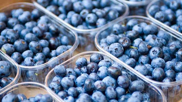 Geofresh Also Exported Blueberries To Dubai This Year