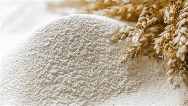 How Much Wheat Flour Did Georgia Buy In 7 Months?