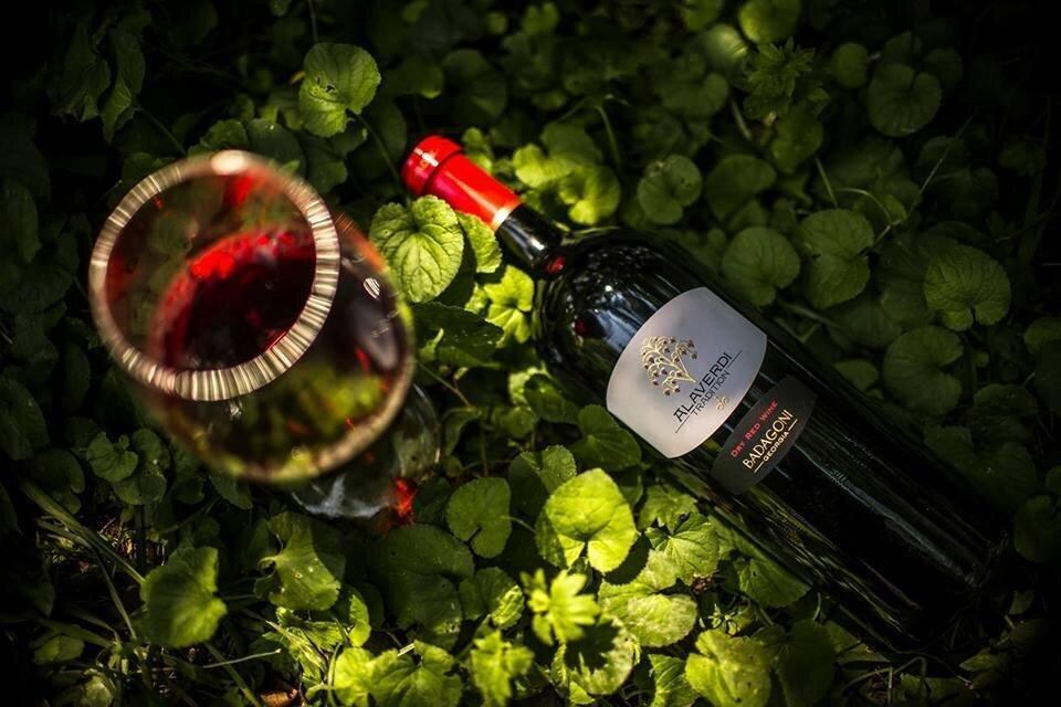 რატომ ვერ ახერხებენ ღვინის კომპანიები ევროპულ ბაზრებზე უფრო აქტიურად გასვლას - ბადაგონის პასუხი