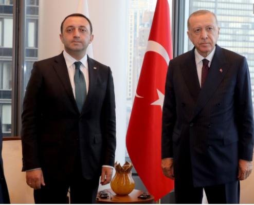 Georgian PM Meets Recep Tayyip Erdogan